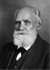 Pavlov for Email Marketers